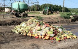 Food-Shortage-Crisis